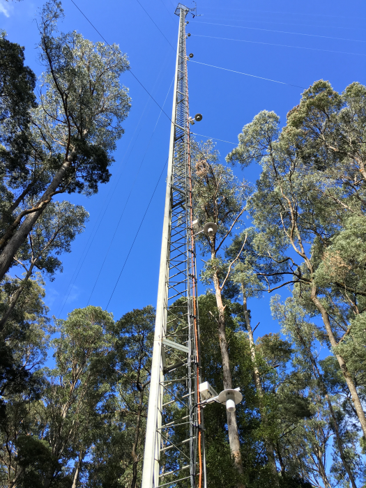 Vue de la tour à flux de Warra. Plusieurs des bouches d'admission de l'AP200 sont visibles. Le CPEC200 est installé au sommet.